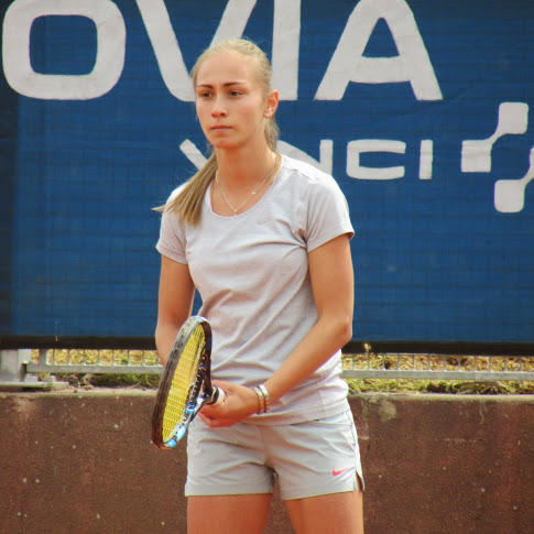 Aleksandra Krunic net worth