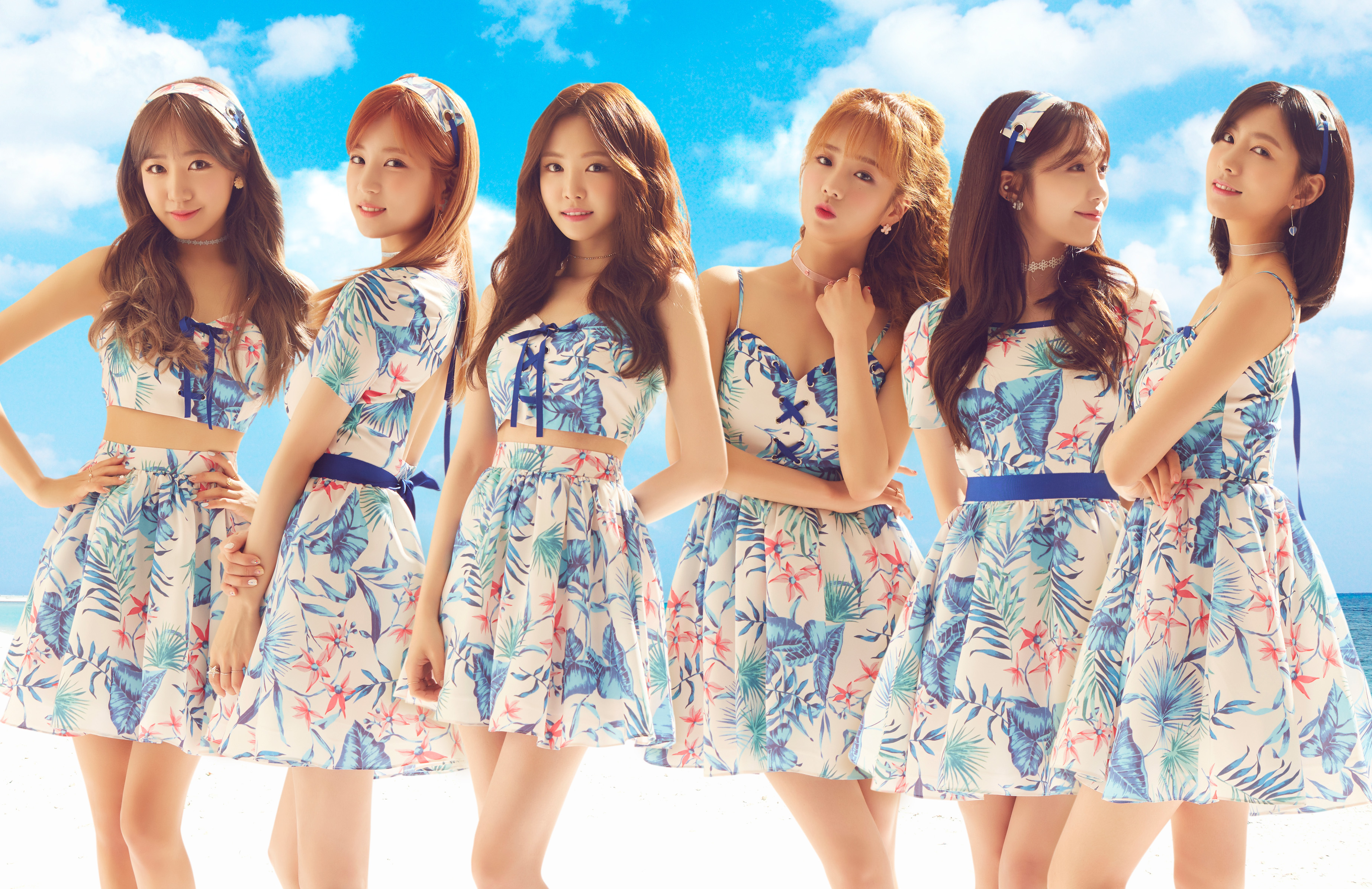 Apink net worth