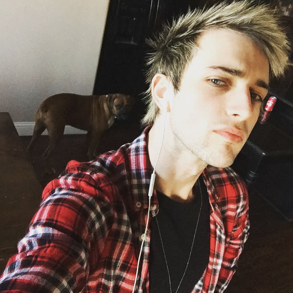 Dalton Rapattoni net worth