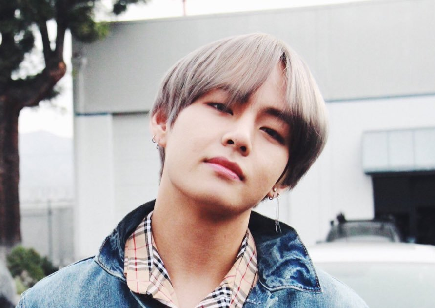 Kim Taehyung net worth